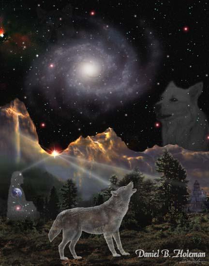starwolf[1].jpg